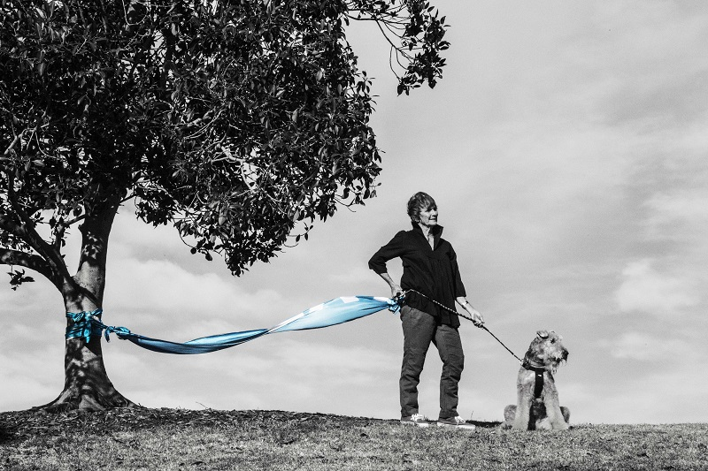 adopt-a-tree_hero_composite_small