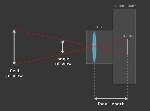 basics-lens